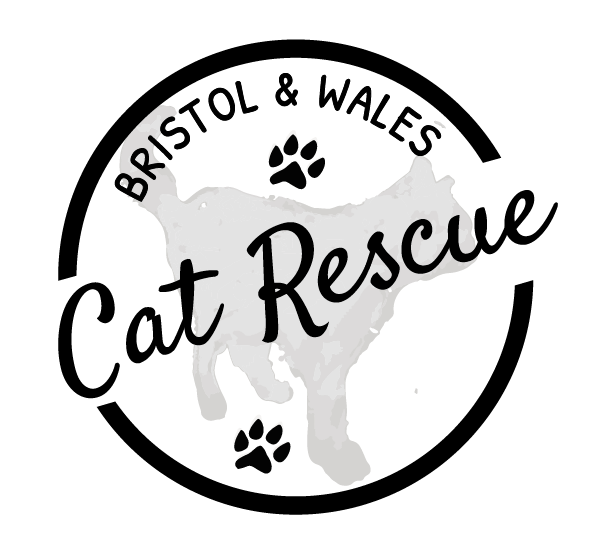 Bristol & Wales Cat Rescue