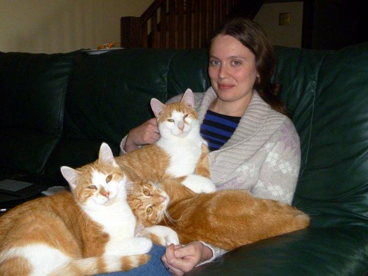 Settled Richie, Simba & Timmy (were Oscar, Oliver & Ollie)
